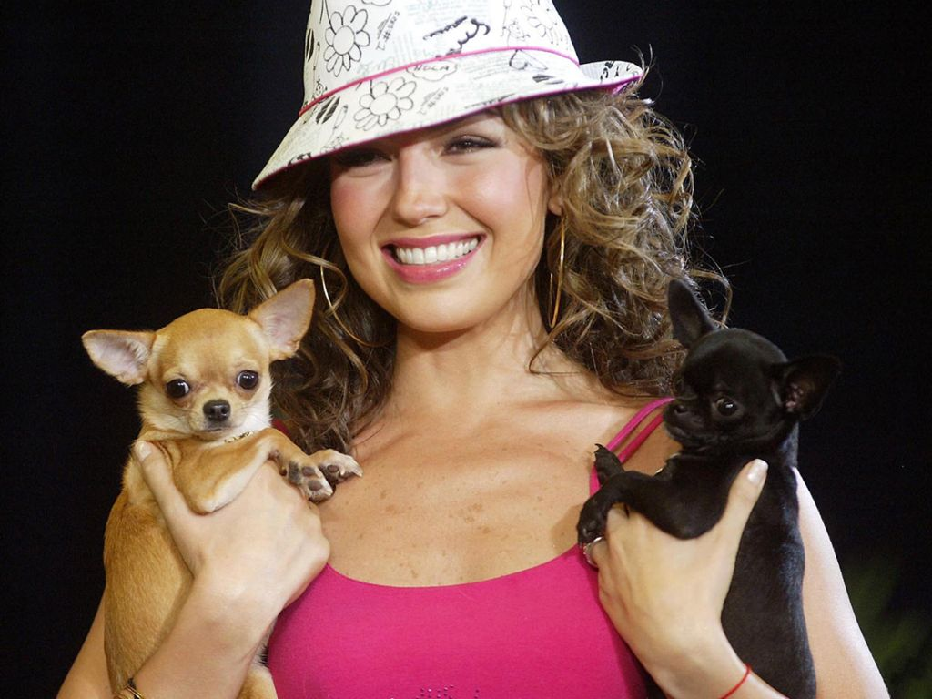 Thalia-55.JPG - Picture of Thalia